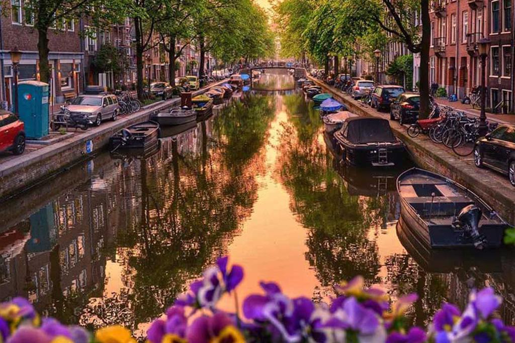 فرانسه-هلند.